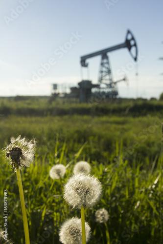 A pumpjack by a grassy field