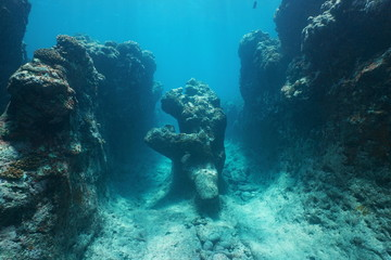 Natural rock formation underwater on the ocean floor carved by the waves in the outer reef of Huahine island, Pacific ocean, French Polynesia