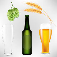 Realistic 3D vector illustration of hops, beers, glasses, bottles and wheat.