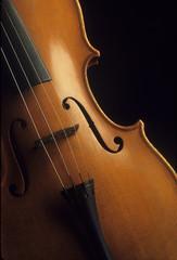 Close-up of a wooden violin
