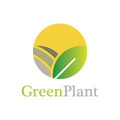 circle green plant logo