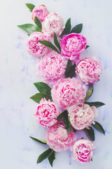 Minimal styled flat lay with peony flowers, petals and leaves on a pastel background