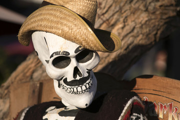 skull with straw hat