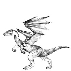 the dragon goes on its hind legs sketch vector graphics black and white drawing