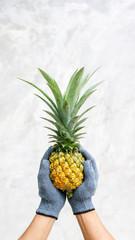 Man holding ripe pineapple on gray background.