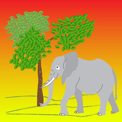 The elephant in the wild, the pop art style, vector illustration