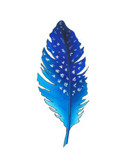 Blue feather, hand drawn with markers
