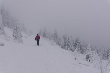Harzer Hexenstieg im Winter