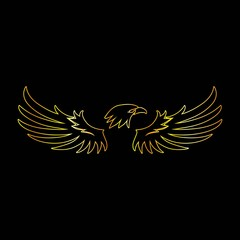 Golden Line Eagle with Black Background, Vector, Illustration