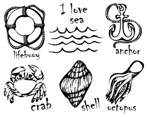 Graphic drawings of marine animals. Imitation of graphic drawings in ink. Drawing and creativity on the sea theme. Vector illustrations.