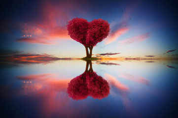 Poster Crimson Abstract image of lonely red color leaf and love shape tree at sunrise scene with reflection in water.