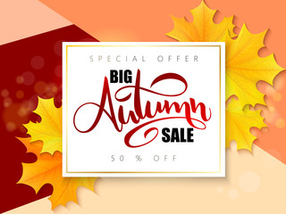 Vector autumn sale banner with hand lettering and yellow autumn maple leaves