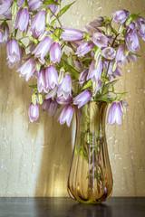 Violet flowers bells close-up in a vase indoors.