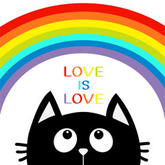 Love is love. Black cat looking up to big rainbow. Cute cartoon character. Valentines Day. Kawaii animal. Love Greeting card. LGBT sign symbol. Flat design. White background. Isolated.