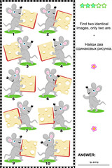 Visual puzzle: Find two identical images of happy mice with cheese slices. Answer included.