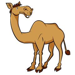 Cartoon camel - Vector Clipart Illustration