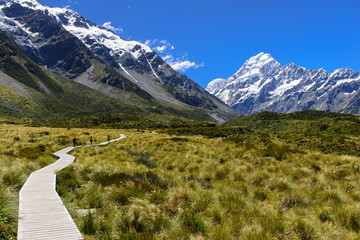 Mt. Cook Trail