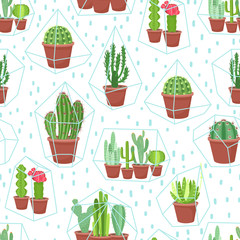 Succulents seamless background. Cactuses and succulents in terrariums geometric florariume. Seamless geometric modern pattern