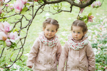 Identical twin girls under blooming magnolia