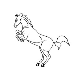 horse coloring
