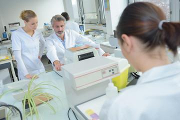the laboratory interns