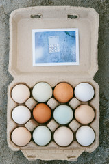 Carton of eggs with instant photograph
