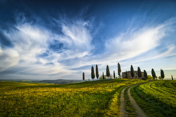 Traditional farm with path and cypresses in Tuscany