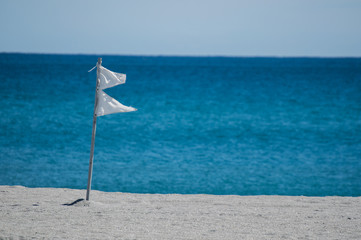 white double warning flags flying on a Florida beach