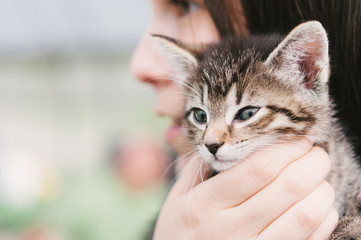 a girl holding a young tabby cat