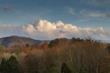 Sevier County Landscape