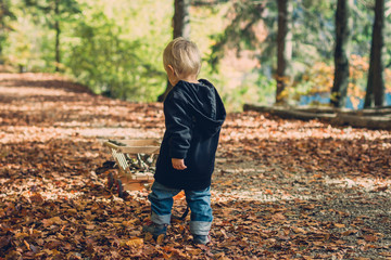 toddler playing with his handcart in an autumnal forest