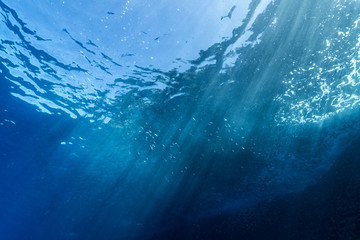 Fototapete - Rays of sunlight shining into sea, underwater view