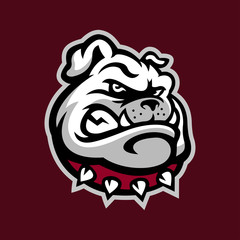 bulldog head mascot logo