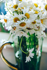 Beautiful summer chamomile in green vase with blurred background. White garden flowers. Floral still life for posters, prints, design, covers, invitations, cards. Wildflowers.