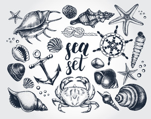 Ink hand drawn set of marine and nautical elements. Sea collection. Template for cards, banners, posters design. Vector illustration.