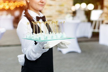 Catering service. Waiter carrying a tray of appetizers. Outdoor party with finger food, sweets.