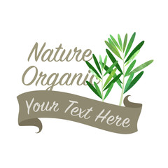 Colorful watercolor texture vector nature organic vegetable banner rosemary
