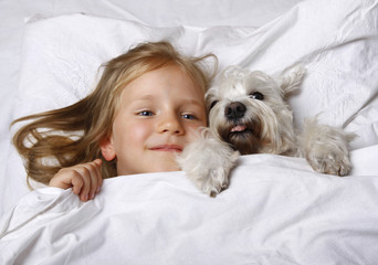 Top view of beautiful blonde little girl lying with white schnauzer puppy dog on white bed. Friendship concept.