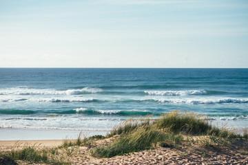 sandy beach landscape at the atlantic ocean