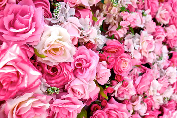 Close up of pink rose background. Roses flower bouquet. For lover or sweetheart of Valentine's Day. Top view.