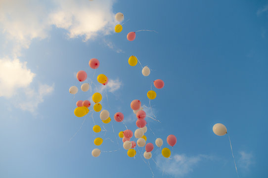 View of balloons in the sky
