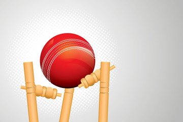 Vector of cricket ball hitting the wicket stumps.