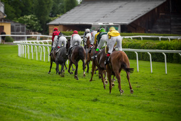 Race horses with jockeys on the home straight