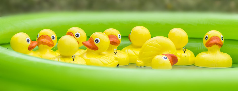 Yellow plastic ducks await there turn to be hooked on a summer fair stall