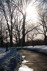 Walkway between snow at the park before sunset