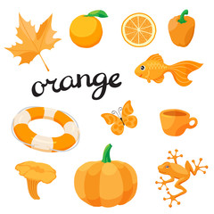 Orange. Learn the color. Education set. Illustration of primary colors. Vector illustration