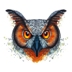 A drawing of a night owl, painted by watercolors, an owl with a bright coloring, orange bloody eyes