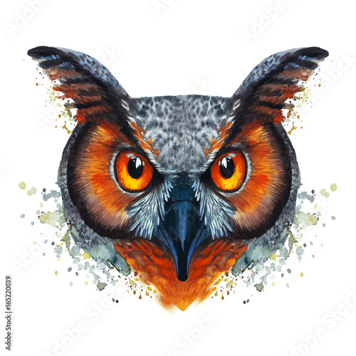 A drawing of a night owl, painted by watercolors, an owl