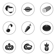 Set Of 9 Editable Cooking Icons. Includes Symbols Such As Root Vegetable, Cucumber, Juniper And More. Can Be Used For Web, Mobile, UI And Infographic Design.