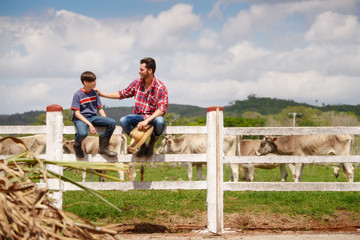 Happy Father And Son Smiling In Farm With Cows